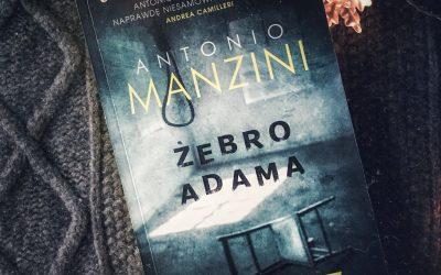 zebro adama recenzja